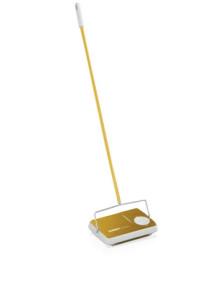 teppichkehrer-regulus-in-gold